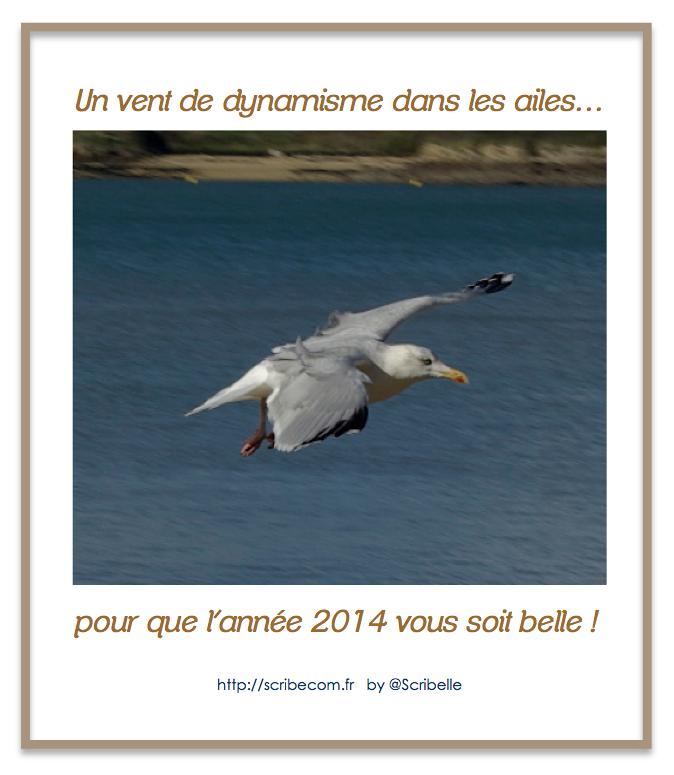 1er janvier… Bonne année !
